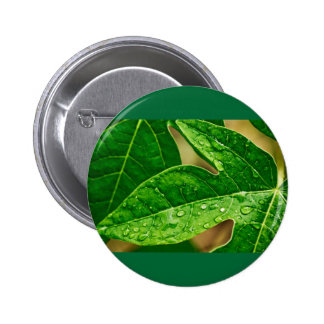 leaves me out 2 inch round button