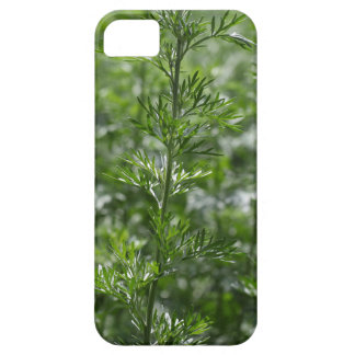Leaves of absinthe iPhone 5 covers