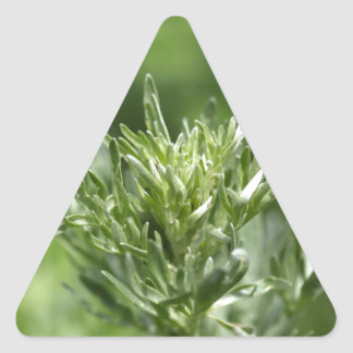 Leaves of absinthe triangle sticker