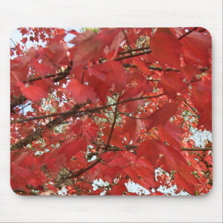 LEAVES of RED by SHARON SHARPE Mouse Pad