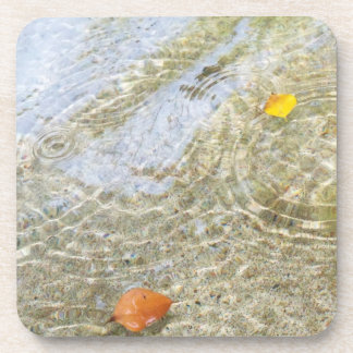 Leaves on water coaster