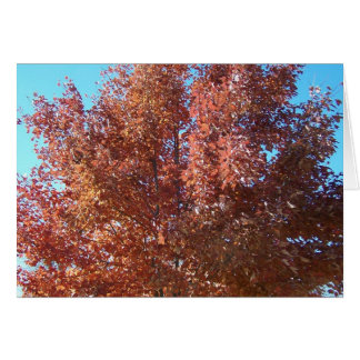 Leaves & Snow/Though My Sins As Scarlet Greeting Card