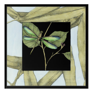 Leaves with Dragonfly Inset by Jennifer Goldberger Acrylic Wall Art