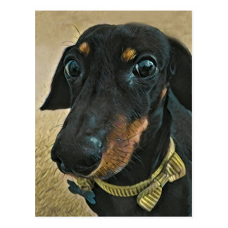 LeBron the Dachshund Postcard