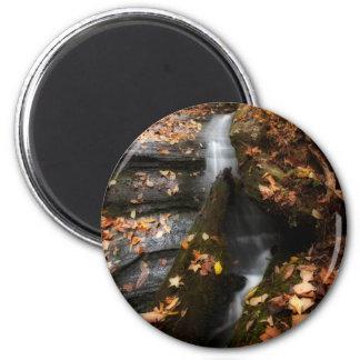 Lee Falls Cascade 2 Inch Round Magnet