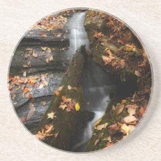 Lee Falls Cascade Coaster