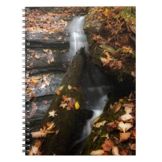 Lee Falls Cascade Spiral Notebook