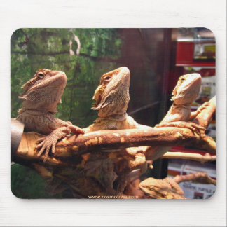 Leezard Trio Mouse Pad