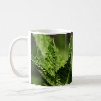 Left-Handed Mint Photograph Mug