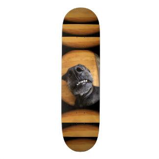 Lefty Skateboard