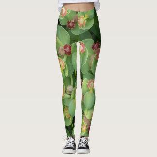 Leggings- Tiny Green Flora Leggings