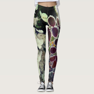 Leggins with views leggings