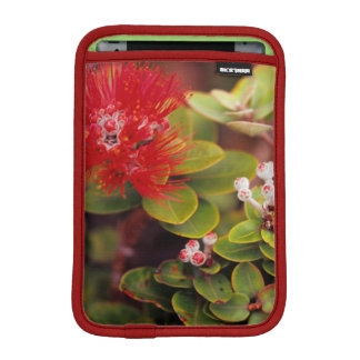 Lehua Blossoms In Hawaii Volcanoes iPad Mini Sleeves