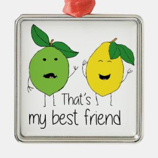 Lemon and Lime Best Friends Metal Ornament