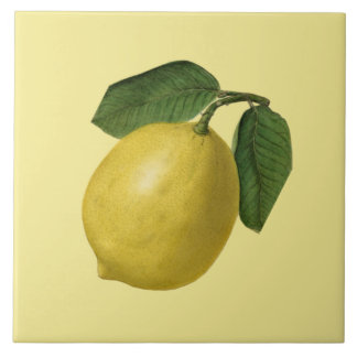 Lemon Botanical ~ Kitchen ~ Any Color Background Tile