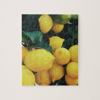 Lemon fruit tree jigsaw puzzle