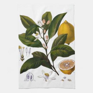 Lemon Kitchen Towel