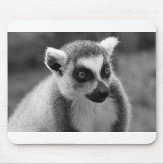 lémur Anneau-coupé la queue Mousepad noir et blanc Tapis De Souris