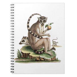 Lemur Artwork Spiral Note Books