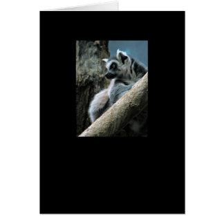 Lemur Card