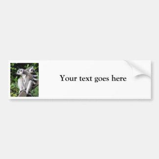 Lemur ring-tailed cute photo custom bumper sticker