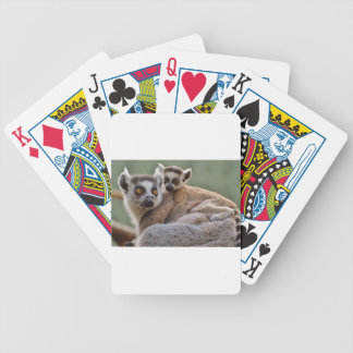Lemurs Bicycle Playing Cards