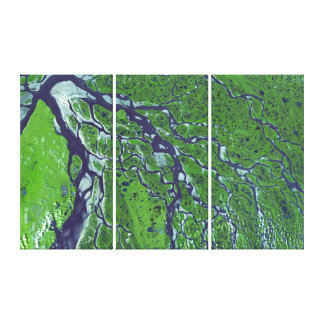 Lena River From Space Canvas Print