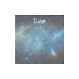 Leo constellation stone magnets