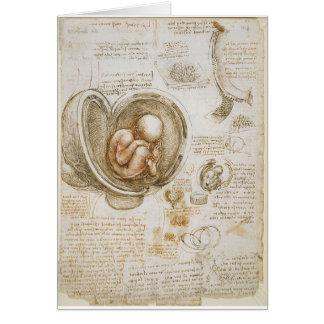Leonardo da Vinci Studies of the Fetus in the Womb Card