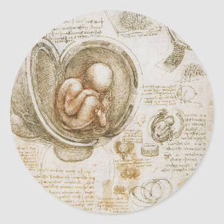 Leonardo da Vinci Studies of the Fetus in the Womb Classic Round Sticker