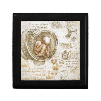 Leonardo da Vinci Studies of the Fetus in the Womb Gift Box