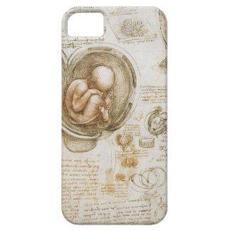 Leonardo da Vinci Studies of the Fetus in the Womb iPhone 5 Cases