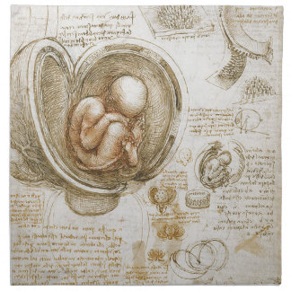 Leonardo da Vinci Studies of the Fetus in the Womb Napkin
