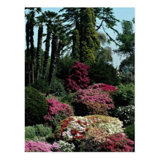 Leonardslee gardens, West Sussex, England Postcard