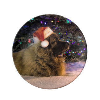 Leonberger Christmas Plate