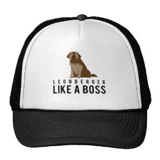 Leonberger, comme un patron casquette trucker