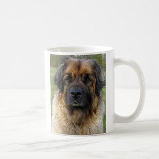 Leonberger dog mug, beautiful photo, gift coffee mug