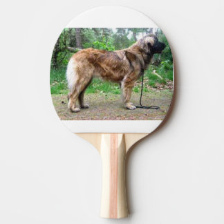 Leonberger-full Ping-Pong Paddle