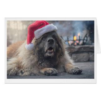 Leonberger Santa Card