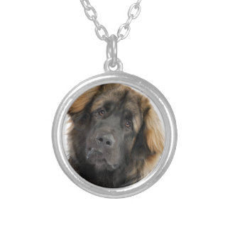 Leonberger Silver Plated Necklace