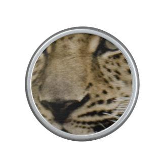 leopard-15 speaker