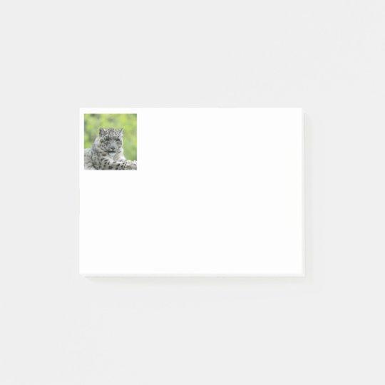Leopard_2015_0310 Post-it Notes