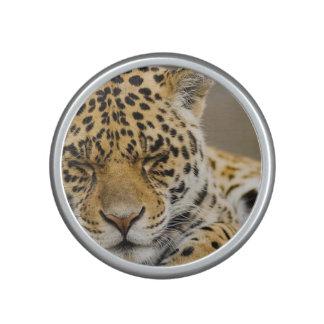 leopard-21 bluetooth speaker