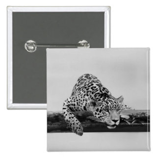 Leopard Buttons