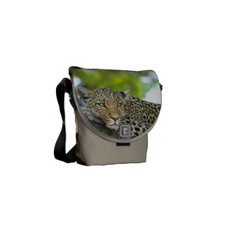 Leopard Cat Animal Print Design Destiny's Destiny Messenger Bags