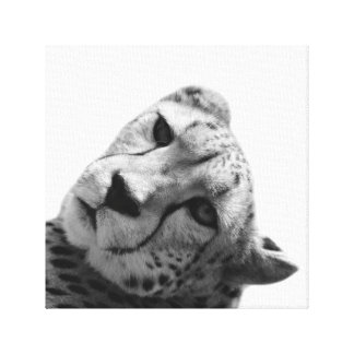 Leopard cheetah wild animal photo black and white canvas print