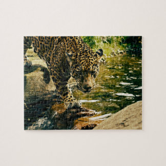Leopard Crossing a Stream Jigsaw Puzzle