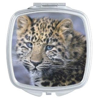 Leopard Cub Compact Mirror