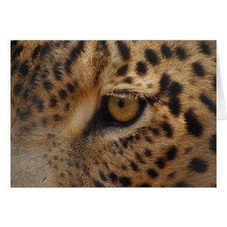 Leopard Eye Card