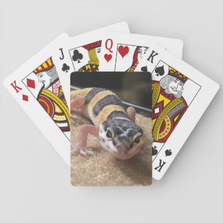 Leopard Gecko Lizard Close Up Playing Cards